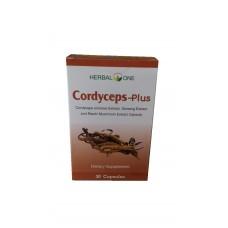 Капсулы Кордицепс Cordyceps-Plus